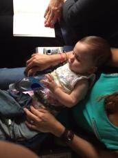 Cat nap on mommy's lap.